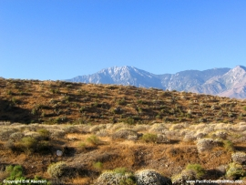 pacific-crest-trail-11