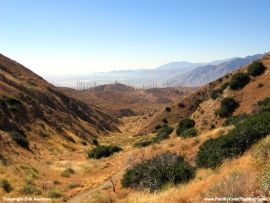 pacific-crest-trail-12