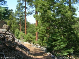 pacific-crest-trail-15