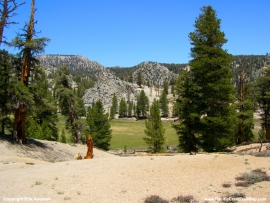 pacific-crest-trail-26