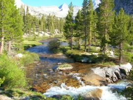 pacific-crest-trail-32