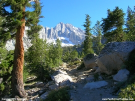 pacific-crest-trail-33