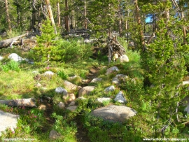 pacific-crest-trail-36