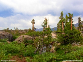 pacific-crest-trail-48