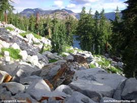 pacific-crest-trail-53
