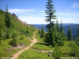 pacific-crest-trail-56