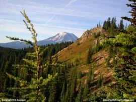 pacific-crest-trail-78