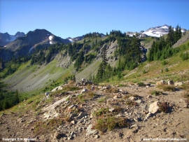 pacific-crest-trail-81