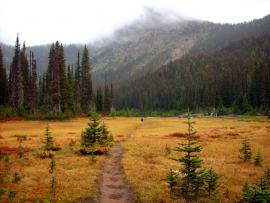 pacific-crest-trail-84b