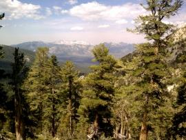 tahoe-rim-trail-02